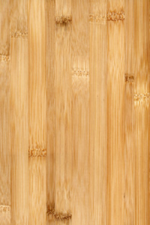 Are bamboo floors really green? | HowStuffWor