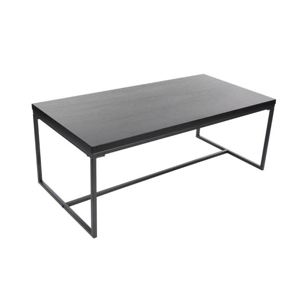 Litton Lane 47 in. x 18 in. Modern Metal and Wood Coffee Table in .