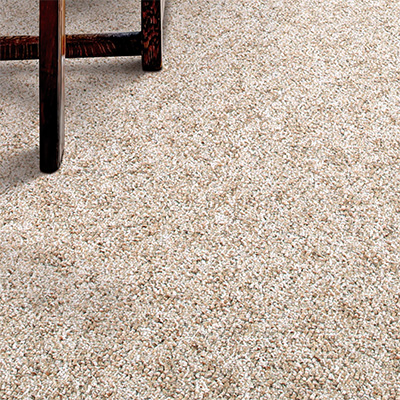 The advantages and disadvantages of flooring carpeting .