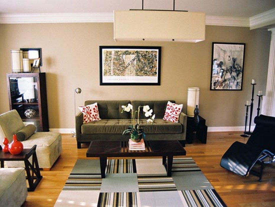 Extraordinary Area Rug Ideas For Living Room Stunning Home Rugs .