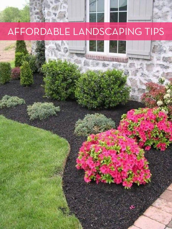 13 Tips For Landscaping On A Budget | Outdoor landscaping, Yard .