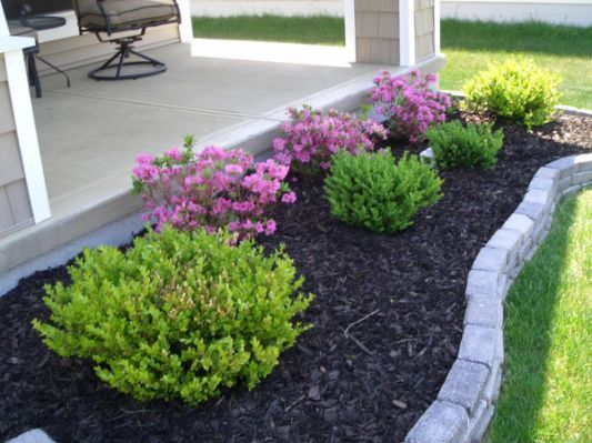 cheap landscaping ideas for front   Easy landscapi