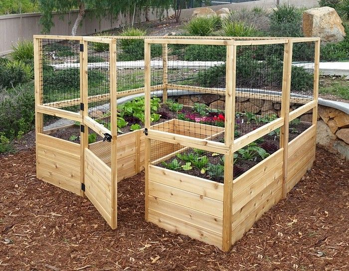 Build a raised and enclosed garden bed for your vegetable garden .