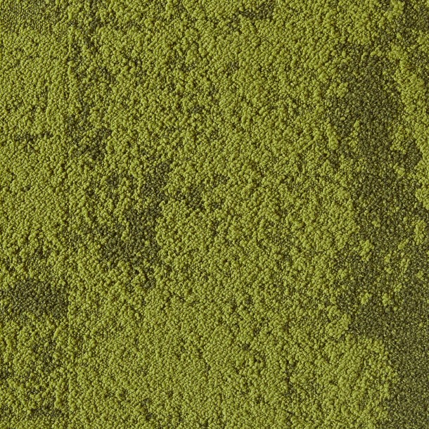 Buy Down to Earth-Grass carpet tile by FL