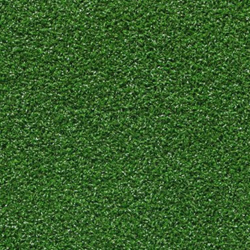 Green Carpet | Harry's Party Rent
