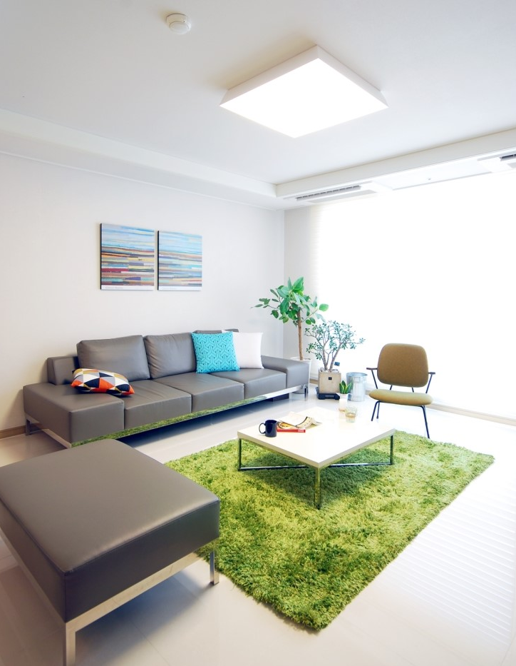 grey couch with a green carpet | Green rug living room, Rugs in .