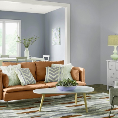 Interior Paint - The Home Dep