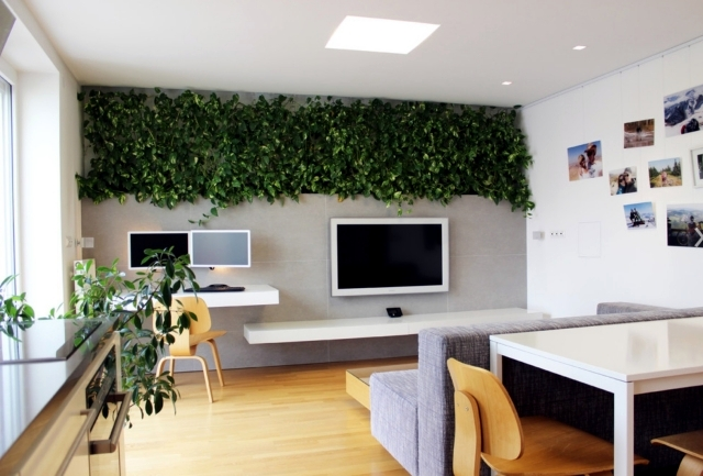 32 ideas for interior decoration plants – creative containers and .