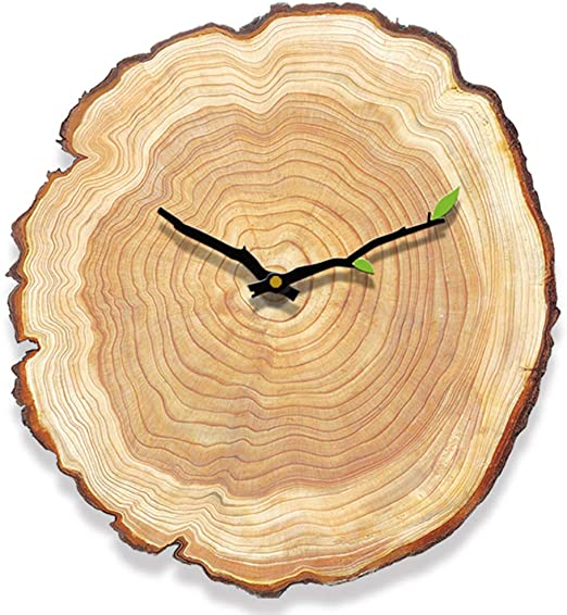 Amazon.com: Yoillione Wooden Wall Clocks Rustic Country Kitchen .