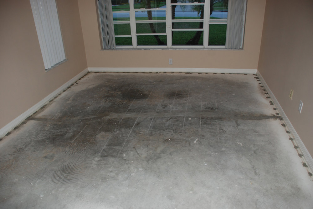 Wood and Laminate Flooring in Florida is Problematic — Studio Tile .