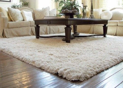 Tips for Decorating Home with Rugs   Shag rug living room, Living .