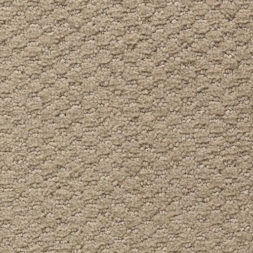 Mohawk Home & Office Classy Style 12-ft Pattern Interior Carpet at .