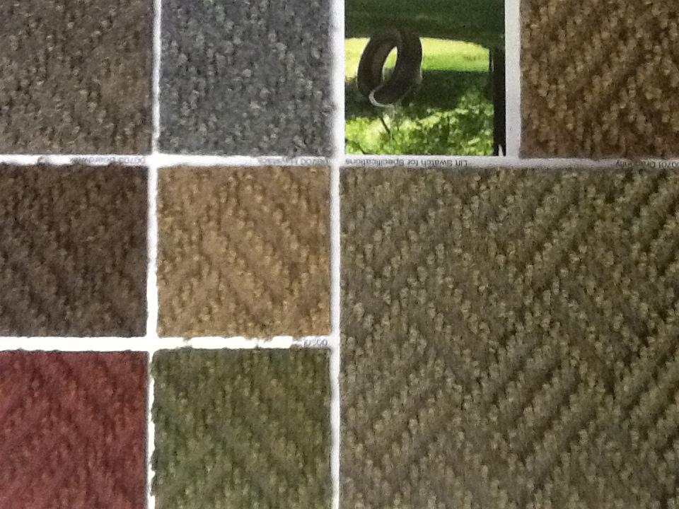 Dynamic Carpets - Indoor/Outdoor Carpe