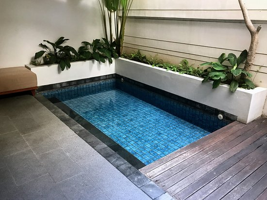 Plunge pool - Premier pool room, Magani Hotel and Spa - Picture of .