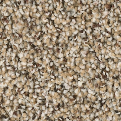 Shaw Keynote 12-ft Textured Essence Interior Carpet at Lowes.c