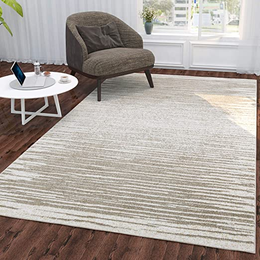 """Amazon.com: Silk Road Concepts Collection Striped Rugs, 5'3"""" x 7'3 ."""