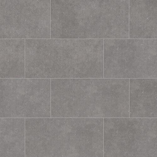 Style Selections Mitte Gray 12-in x 24-in Porcelain Tile (Common .